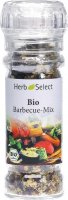 Produktbild von Herbselect Barbecue Mix Bio 45g