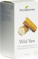 Product picture of Phytopharma Wild Yam Kapseln 400mg 80 Stück