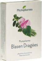 Image du produit Phytopharma Blasendragees 20 Stück