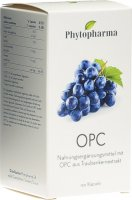 Product picture of Phytopharma Opc Kapseln 95mg 120 Stück