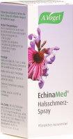 Immagine del prodotto Echinamed Halsschmerz Spray 30ml